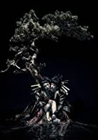 the GazettE LIVE TOUR 12-13【DIVISION】FINAL MELT LIVE AT 03.10 SAITAMA SUPER ARENA [DVD](在庫あり。)