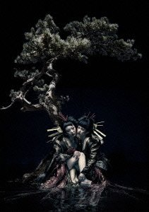 the GazettE LIVE TOUR 12-13【DI...