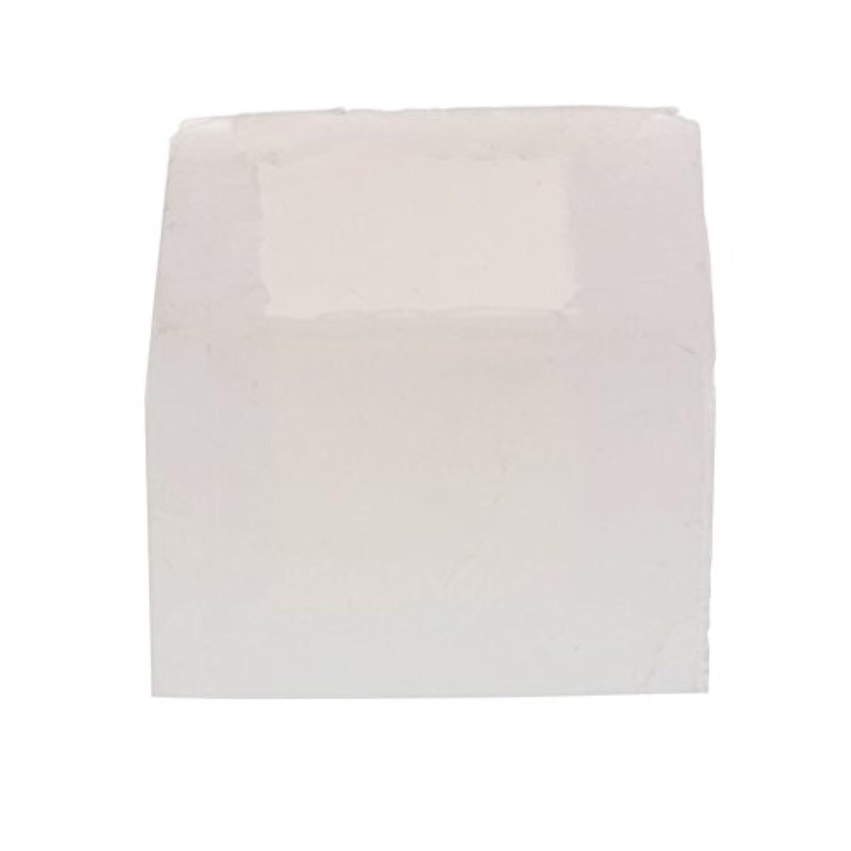 Fenteer 5サイズ選べる 手作り DIYジュエリー アクセサリー 透明 シリコーン金型 ペンダントイヤリング DIY樹脂工芸 ホーム 多用途 - 20mmキューブ