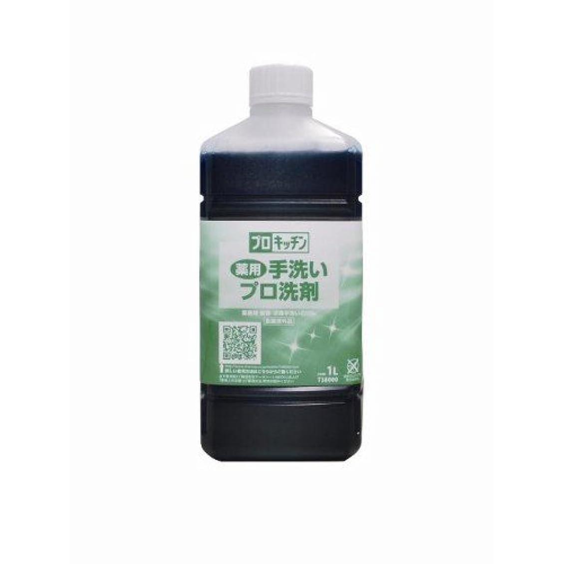 意気込み最少動かない薬用手洗いプロ洗剤 1L
