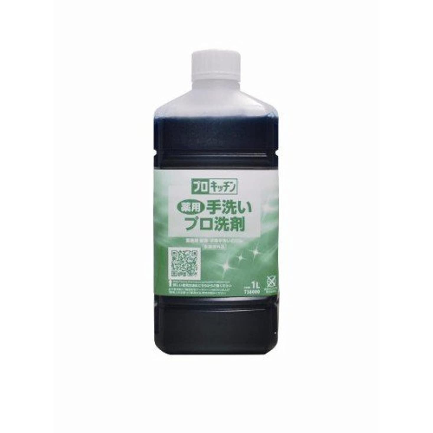 手数料国家費やす薬用手洗いプロ洗剤 1L