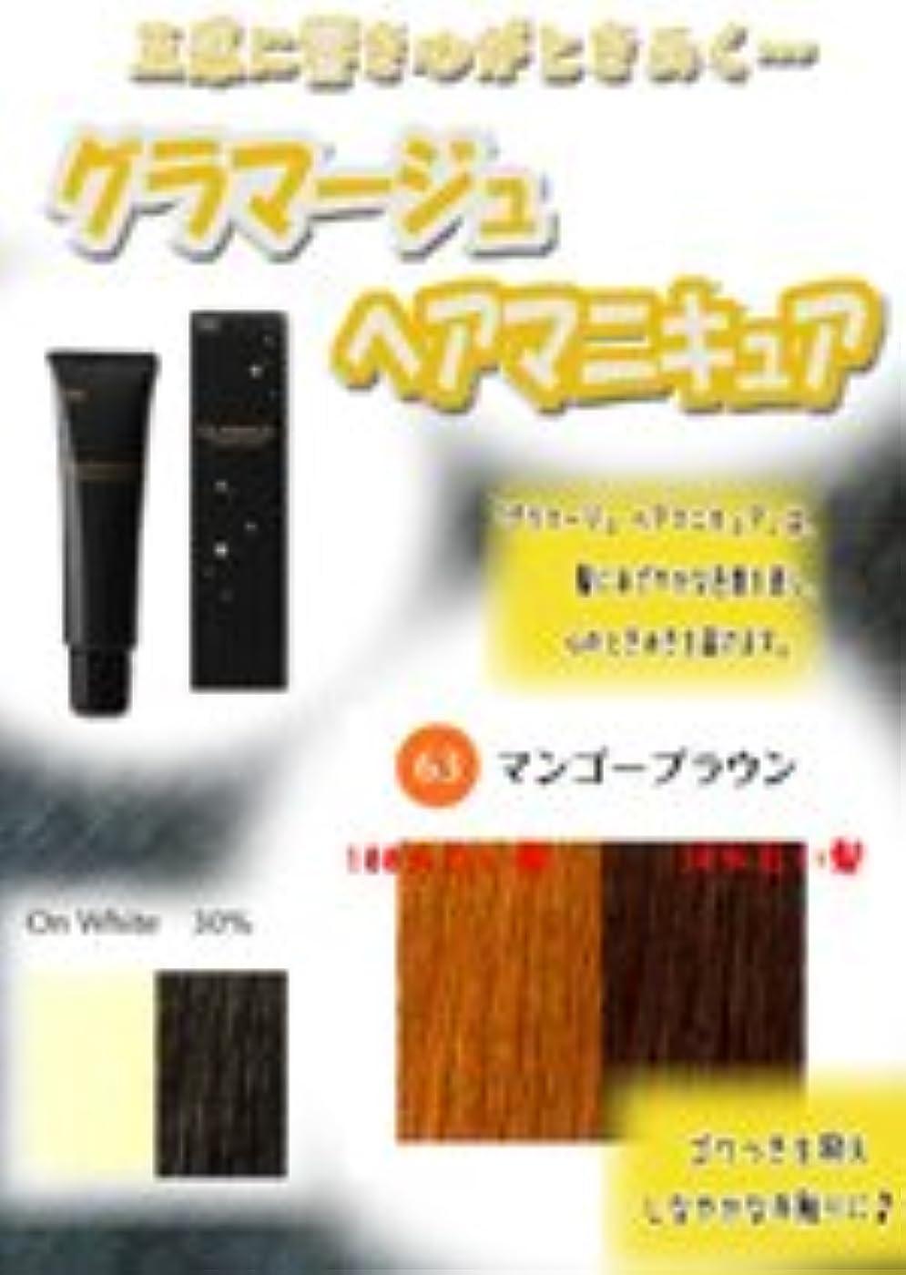 相関する積分吸収剤HOYU ホーユー グラマージュ ヘアマニキュア 63マンゴーブラウン 150g 【ブラウン系】
