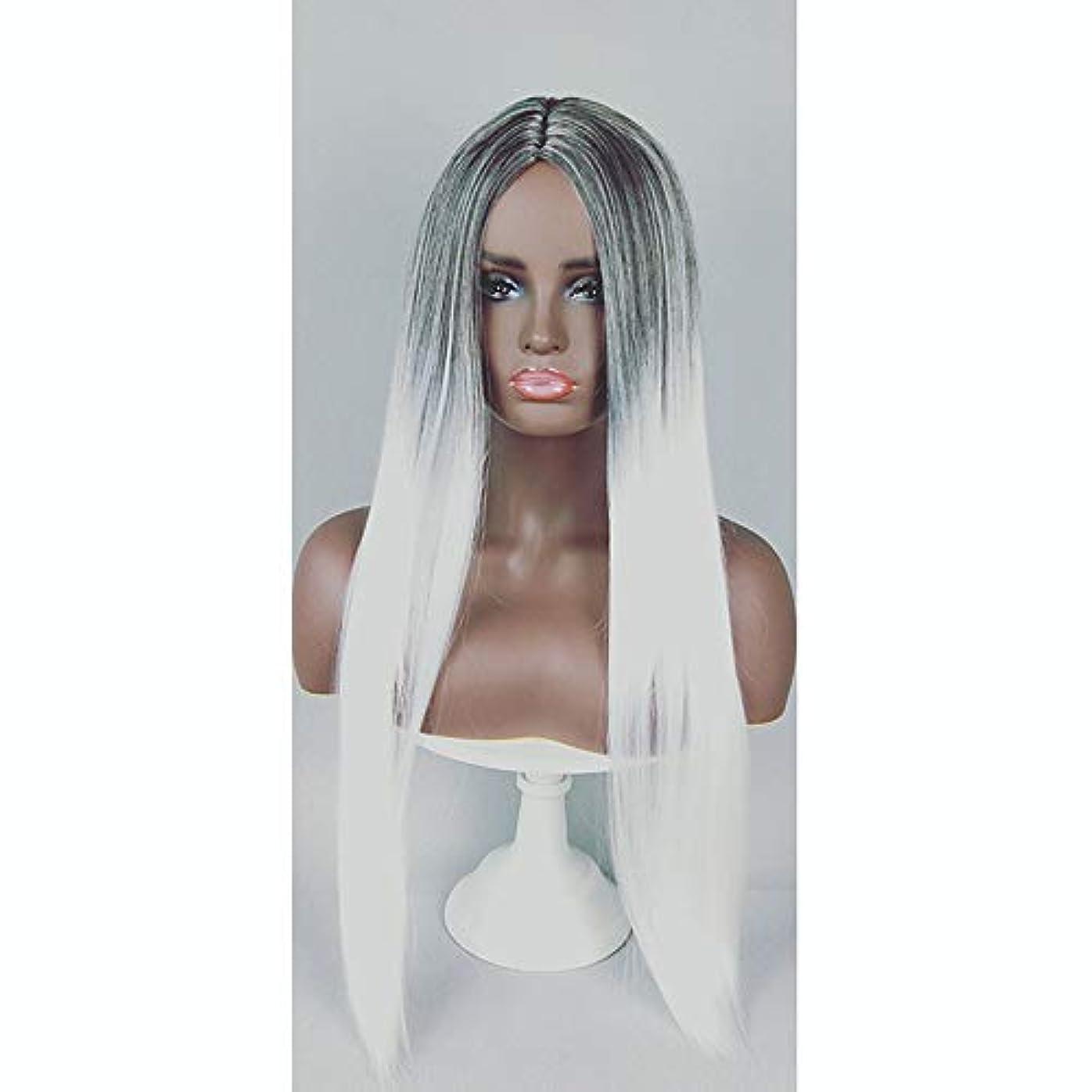誠実予知バルクファッション女性用ウィッグ、ナチュラルロングストレートグラデーションヘアラインヘアセット、パーティーロールプレイングウィッグ