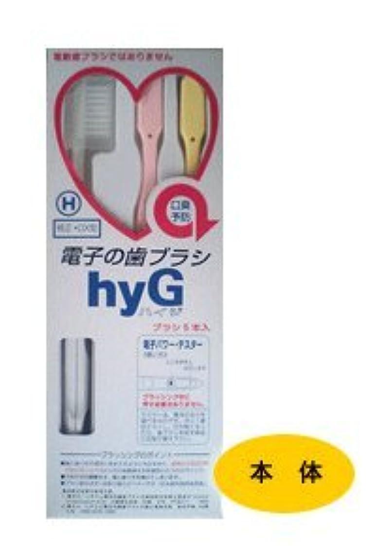 無礼に立方体追記電子の歯ブラシ ハイジ(hyG) 本体 H(ハード) 【純正?DX型】
