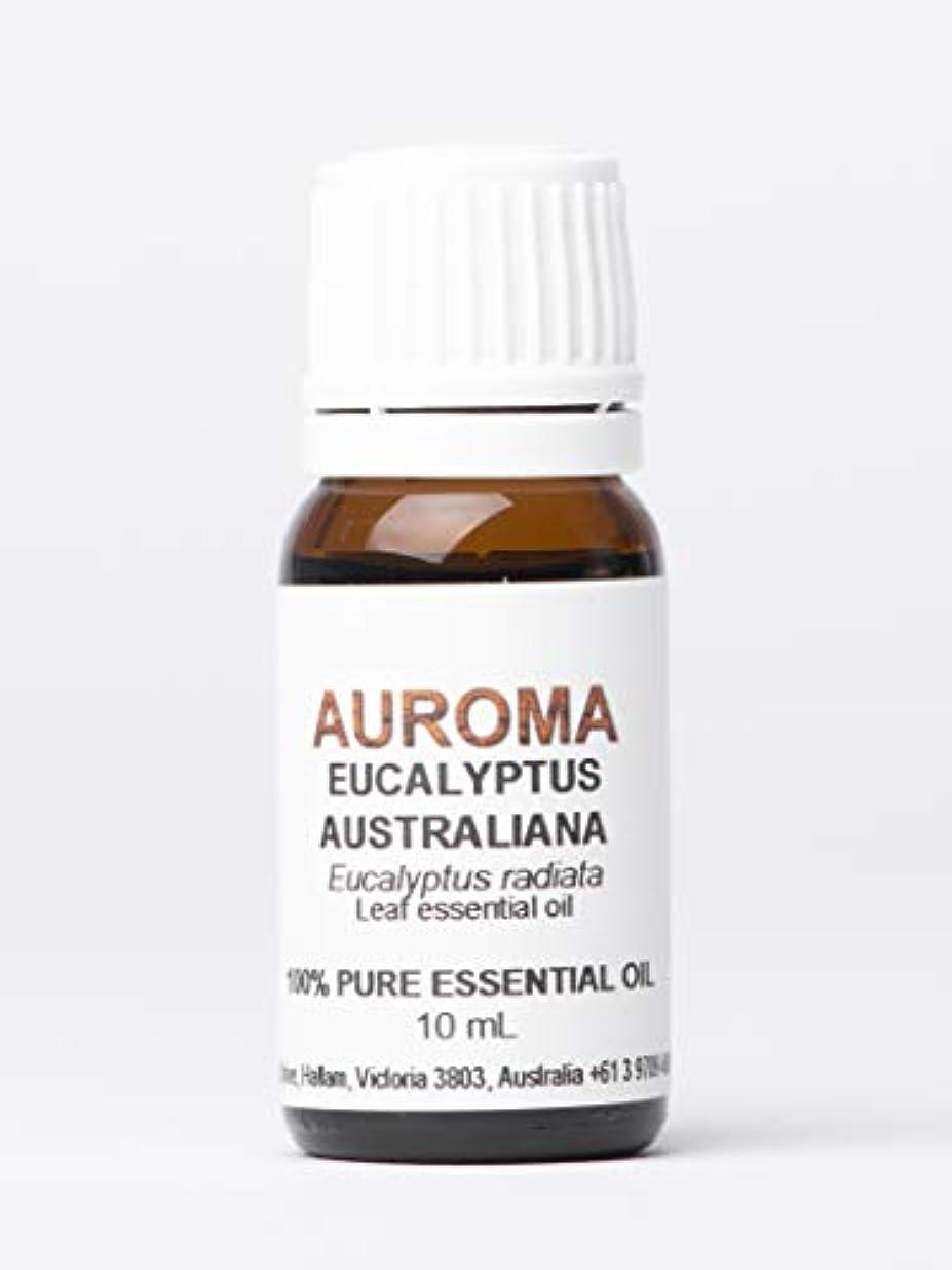 からかう豪華な株式AUROMA ユーカリオーストラリアーナ(ラディアタ種) 10ml