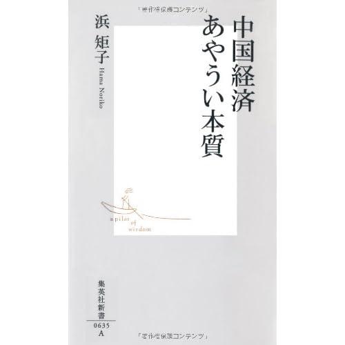 中国経済 あやうい本質 (集英社新書)