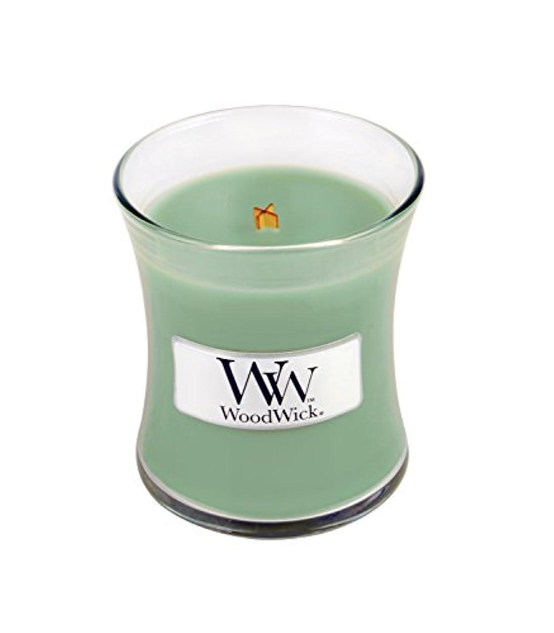 凍った光電ハブホワイトWillow Moss WoodWickミニ砂時計Jar Candle