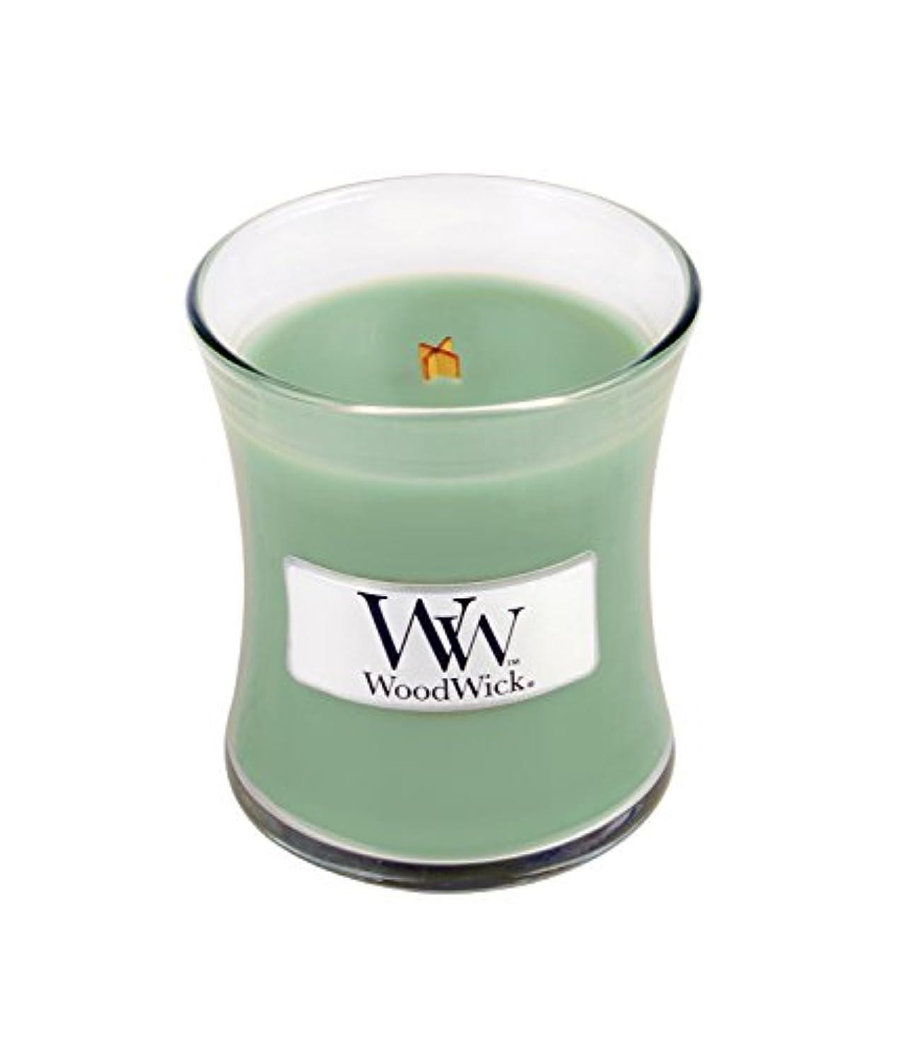 天気フランクワースリーグラスホワイトWillow Moss WoodWickミニ砂時計Jar Candle