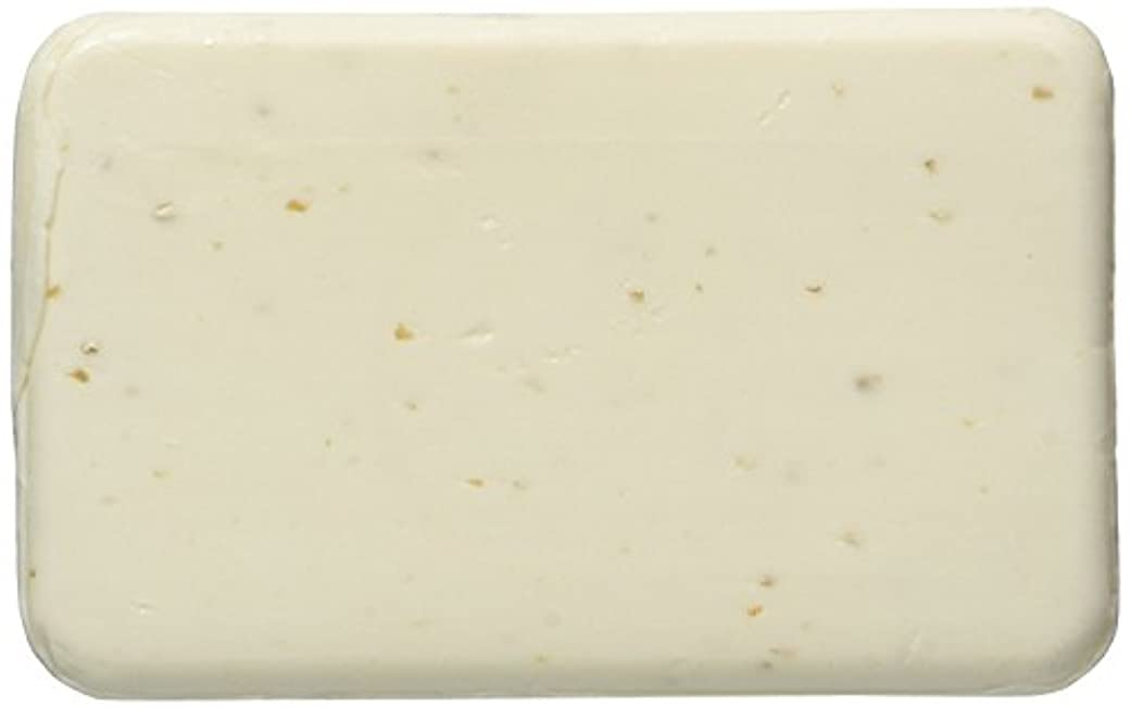 組み立てるポルティコ流暢Pack of 2 Trader Joe's Savon de France Oatmeal Exfoliant Ginger Almond Bar Soap 8.8 oz by Trader Joe's [並行輸入品]