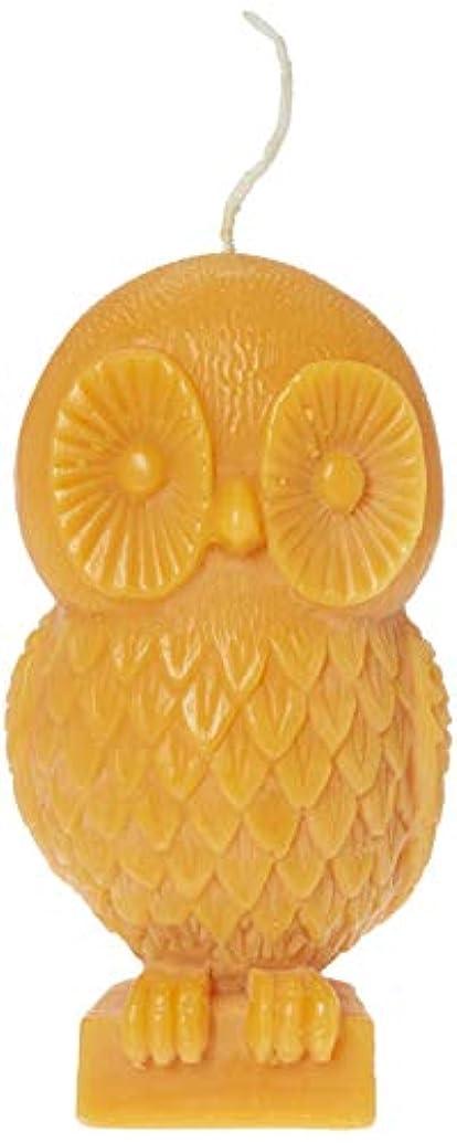 パースブラックボロウ不合格ピニオン(Pumpkin) - Chesapeake Bay Candle Rustic Gathering 15cm Unfragranced Wax Owl Candle (Pumpkin)