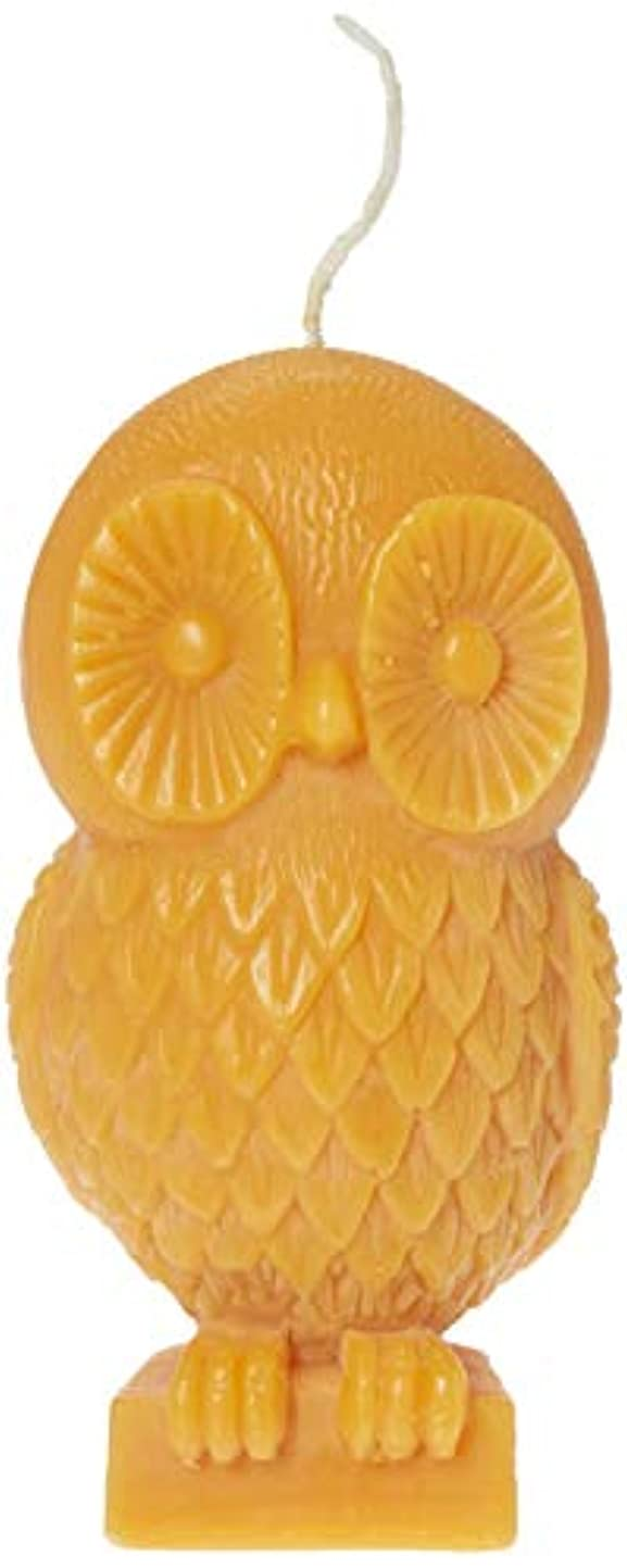 思いつく作動する守る(Pumpkin) - Chesapeake Bay Candle Rustic Gathering 15cm Unfragranced Wax Owl Candle (Pumpkin)