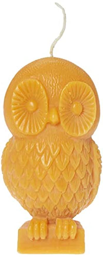 リース結婚するせせらぎ(Pumpkin) - Chesapeake Bay Candle Rustic Gathering 15cm Unfragranced Wax Owl Candle (Pumpkin)