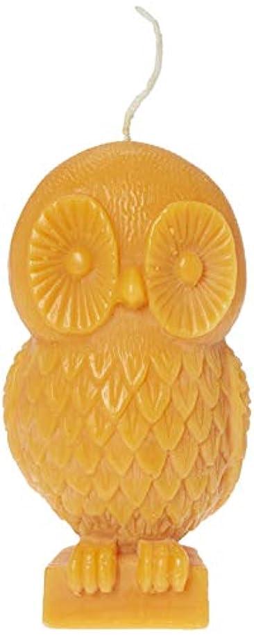 船外暴動ビタミン(Pumpkin) - Chesapeake Bay Candle Rustic Gathering 15cm Unfragranced Wax Owl Candle (Pumpkin)