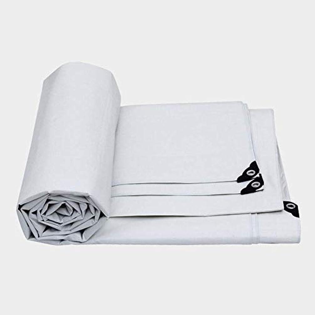 フィクション移行する考える36-dianyejiancai 屋外用防水シート耐圧防風防風用防風防風布高温用 (Color : 白, サイズ : 10x12m)