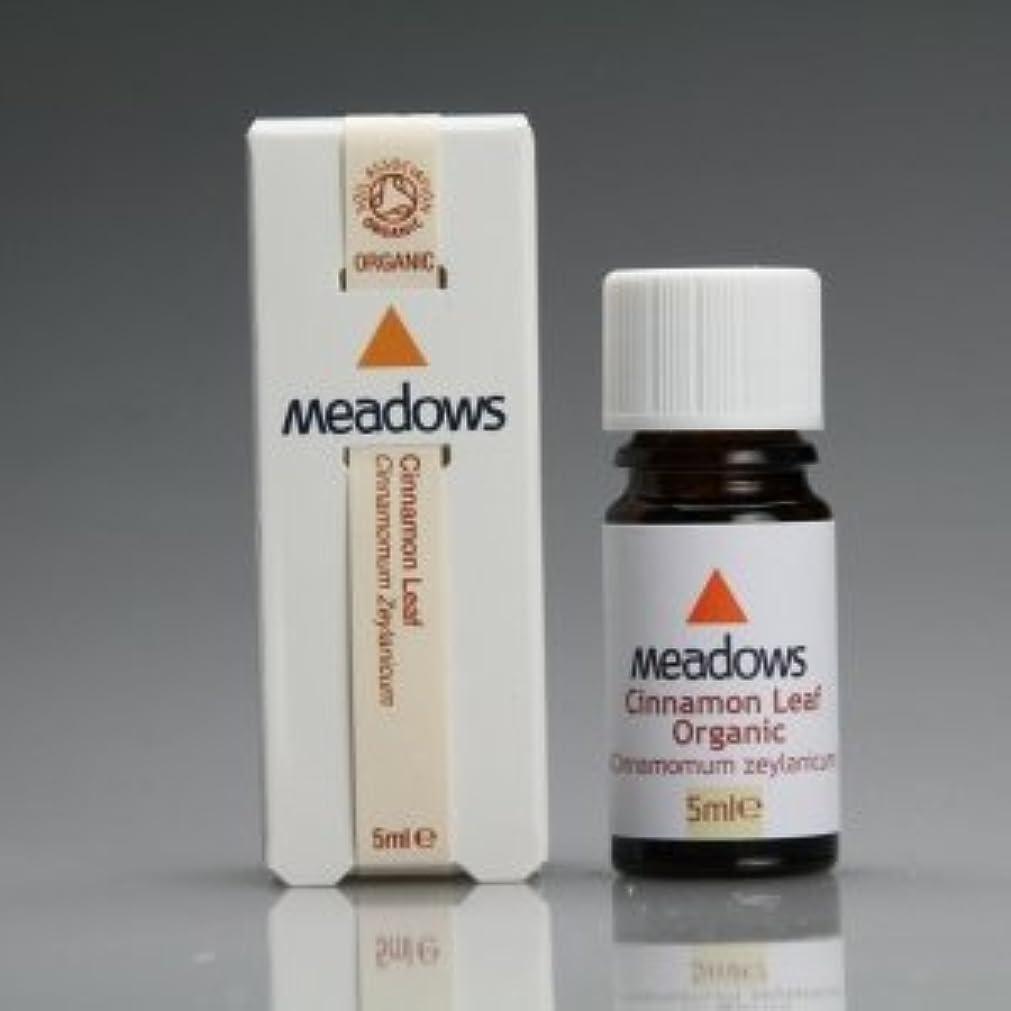 統治する有効社交的メドウズ エッセンシャルオイル シナモンリーフ 5ml