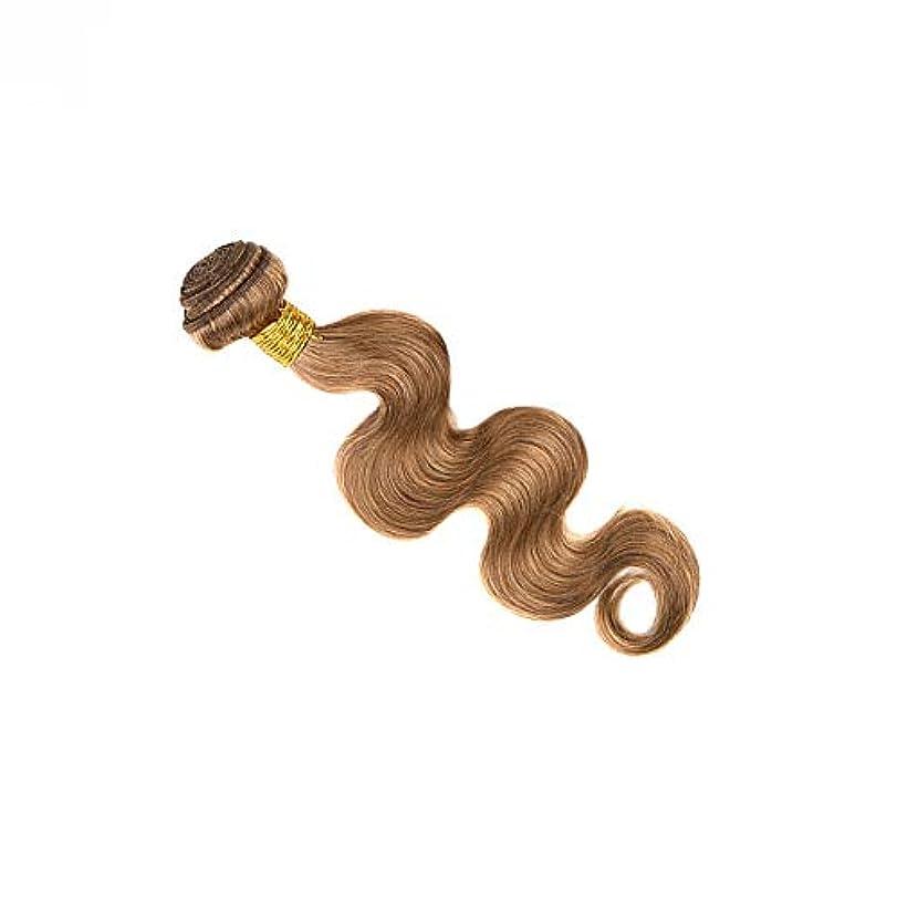 人事累積意図Goodsok-jp ブラジル人毛織りバンドルボディウェーブナチュラルヘアエクステンション27#ブラウンカラー(100g、1バンドル) (色 : ブラウン, サイズ : 20 inch)