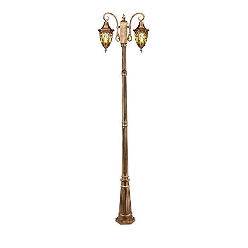 つかむ灰マイナス2つのヘッド真鍮色のレトロな街路灯屋外防水アルミ合金の高ポールポストライトヴィラコートヤードガーデンアイル風景ランタンの芝生ライト (サイズ : H:2.3M)