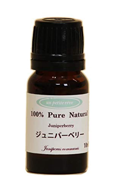 ポスト印象派テクスチャー十分ですジュニパーベリー  10ml 100%天然アロマエッセンシャルオイル(精油)