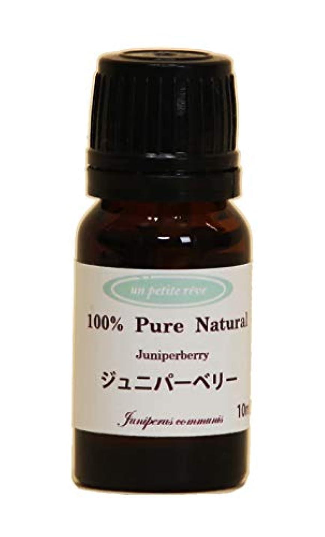 仮定する分配しますヒューマニスティックジュニパーベリー  10ml 100%天然アロマエッセンシャルオイル(精油)