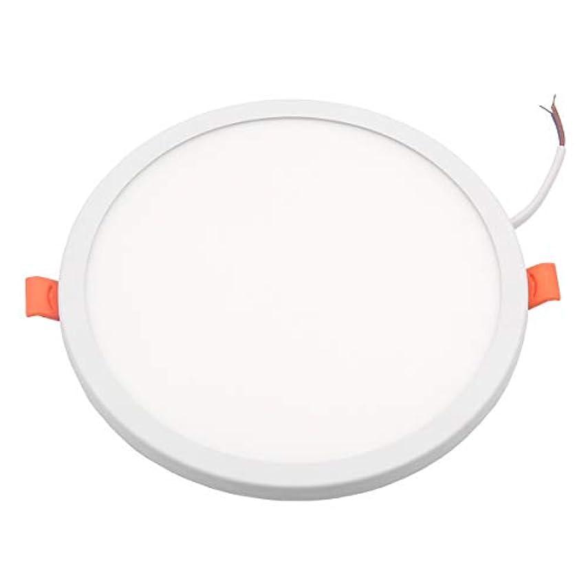 資格情報合唱団ポジションLEDシーリングライト 20W LEDパネルライト 円形 LED埋め込み式照明 調整可能な治具キット LEDダウンライト ホームオフィスの商業照明のため 白色光 6000K (20W)