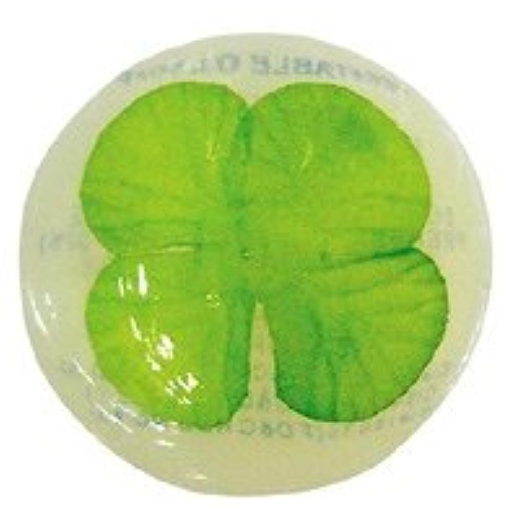 コールド熟読マイクロベジタブルソープ ハッピーリーフ「クローバー」20個セット フローラルブーケの香り