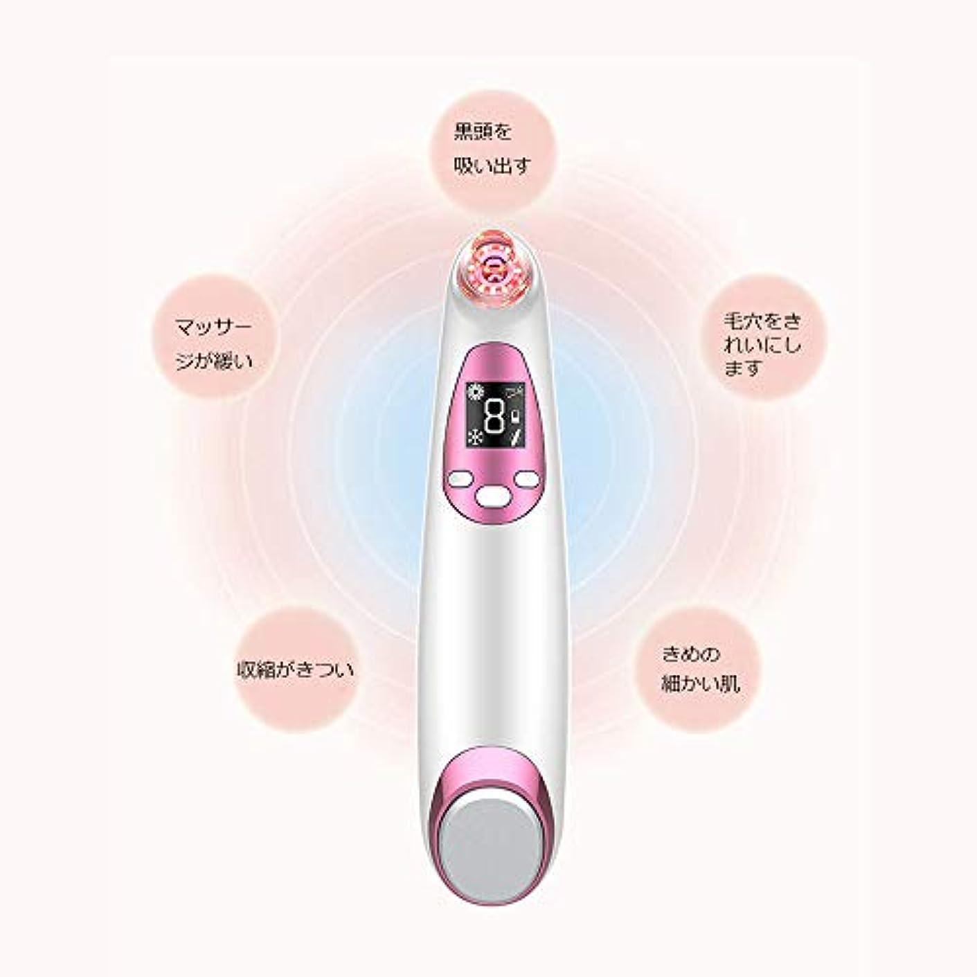 痴漢居心地の良い石にきびの除去剤の気孔の掃除機、LED表示が付いている顔の気孔の洗剤、熱く/冷たい振動心配のパネル、再充電可能および4つの吸引の頭部