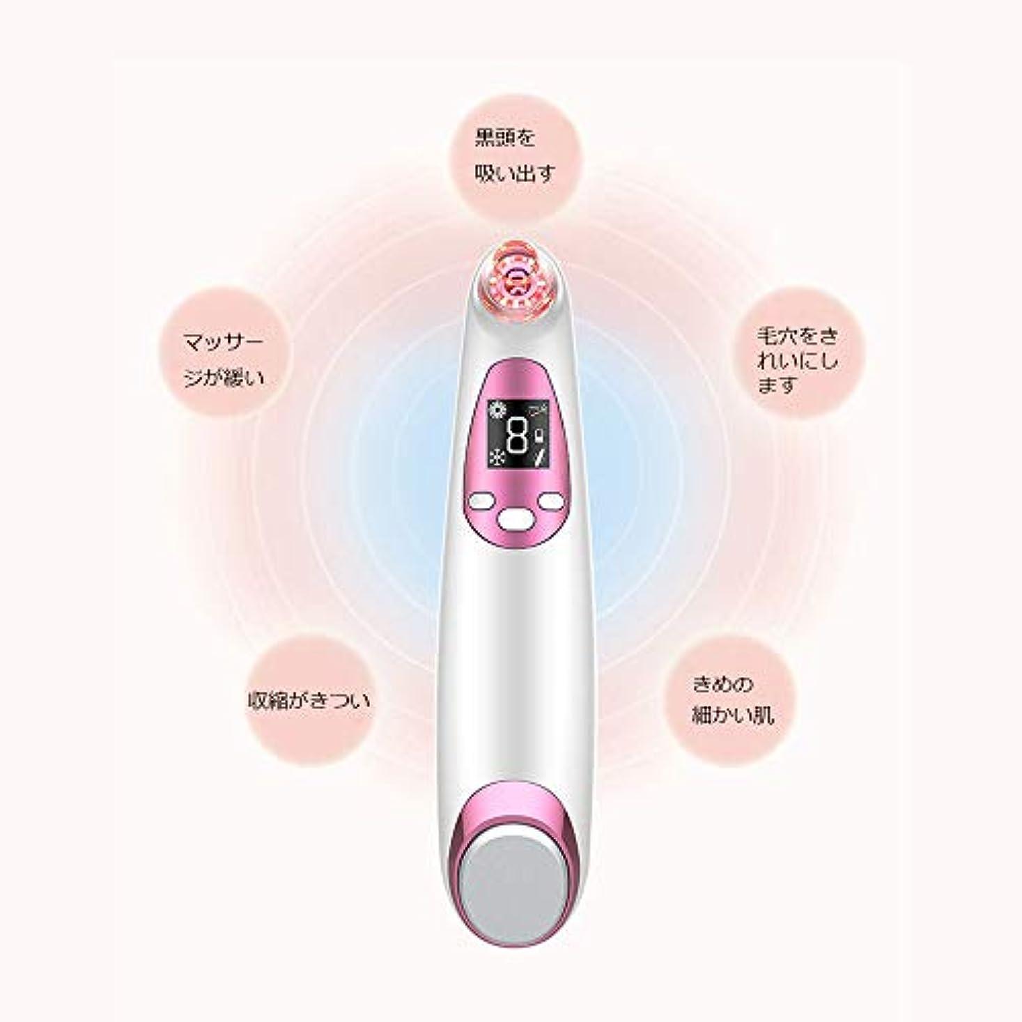 突っ込む言及する引き渡すにきびの除去剤の気孔の掃除機、LED表示が付いている顔の気孔の洗剤、熱く/冷たい振動心配のパネル、再充電可能および4つの吸引の頭部
