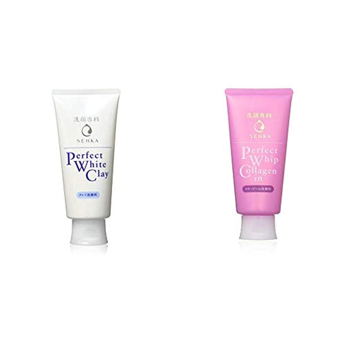 等倫理的プレビスサイト洗顔専科 パーフェクトホワイトクレイ 洗顔料 120g & パーフェクトホイップ コラーゲンin 洗顔フォーム 120g