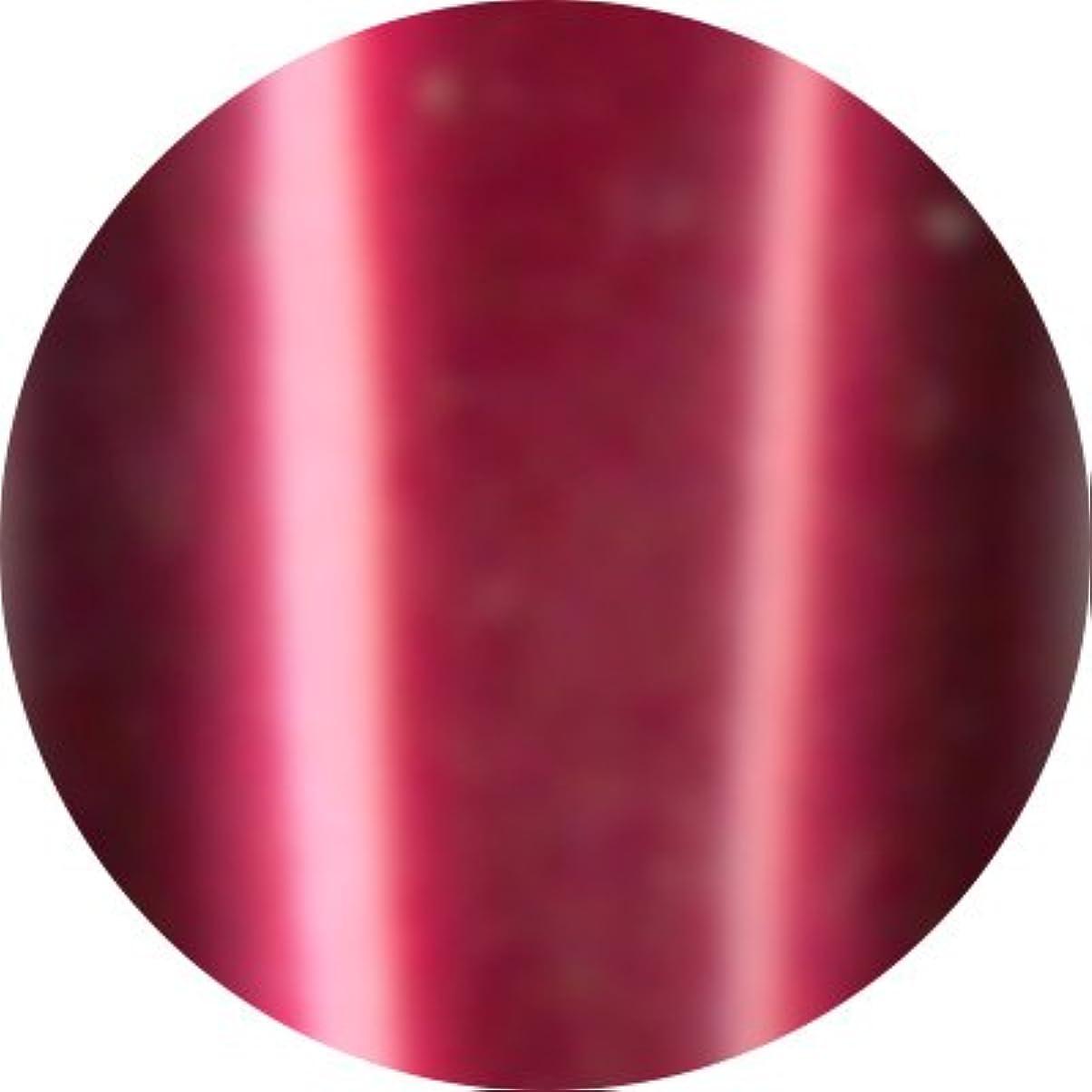 敏感な復活上Jewelry jel(ジュエリージェル) カラージェル 5ml<BR>メタリック MT019