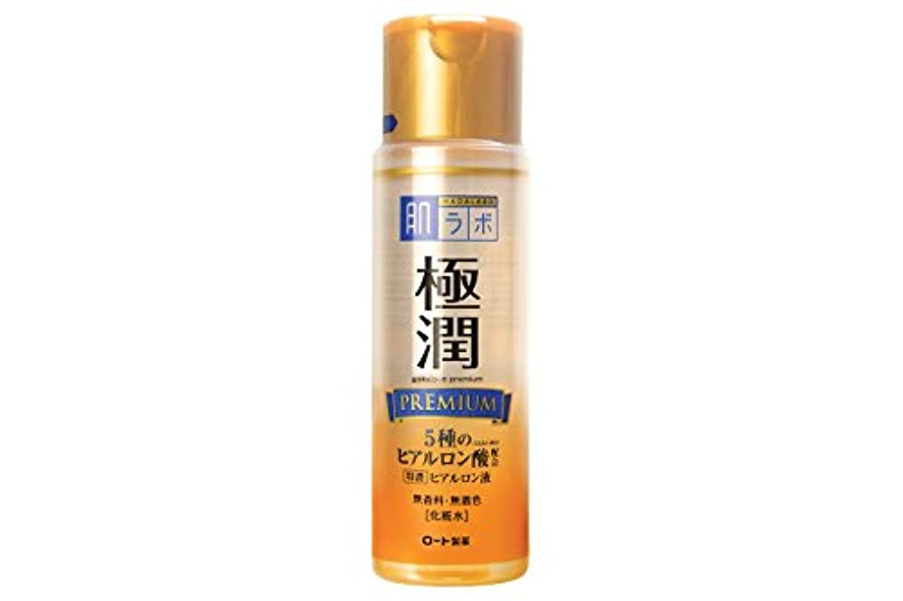 甘い時系列衝撃肌研 極潤プレミアム ヒアルロン液 170mL