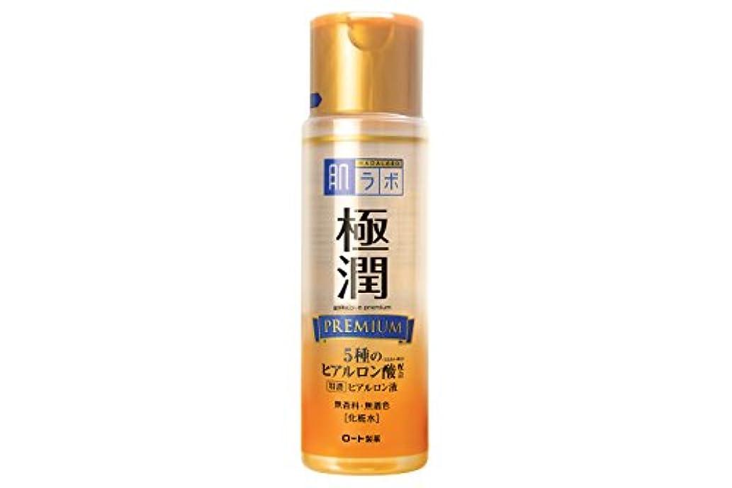 サイトライン服を洗う人質肌研 極潤プレミアム ヒアルロン液 170mL