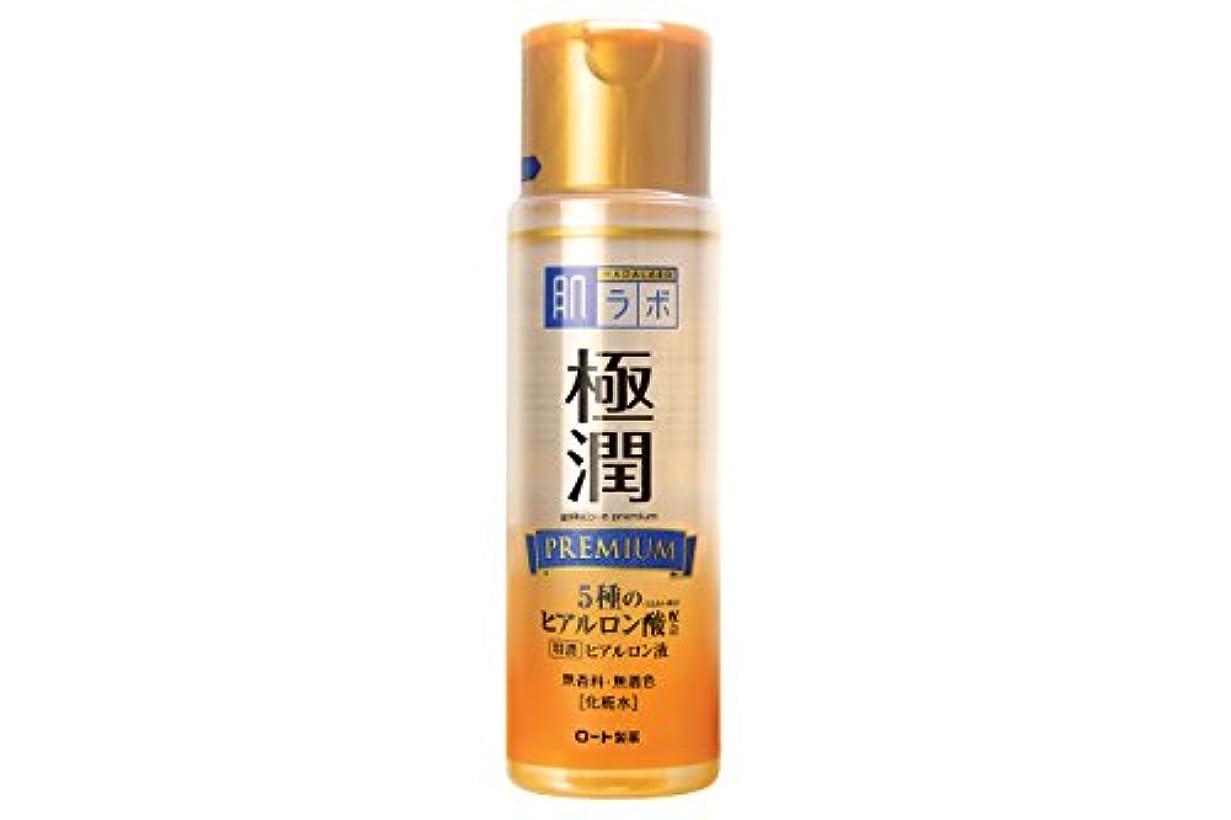 鉄道駅レンダーマウント肌研 極潤プレミアム ヒアルロン液 170mL