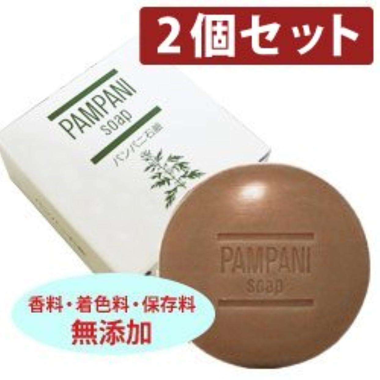 ベース反逆者些細パンパニ 石鹸・90g 【2個セット】