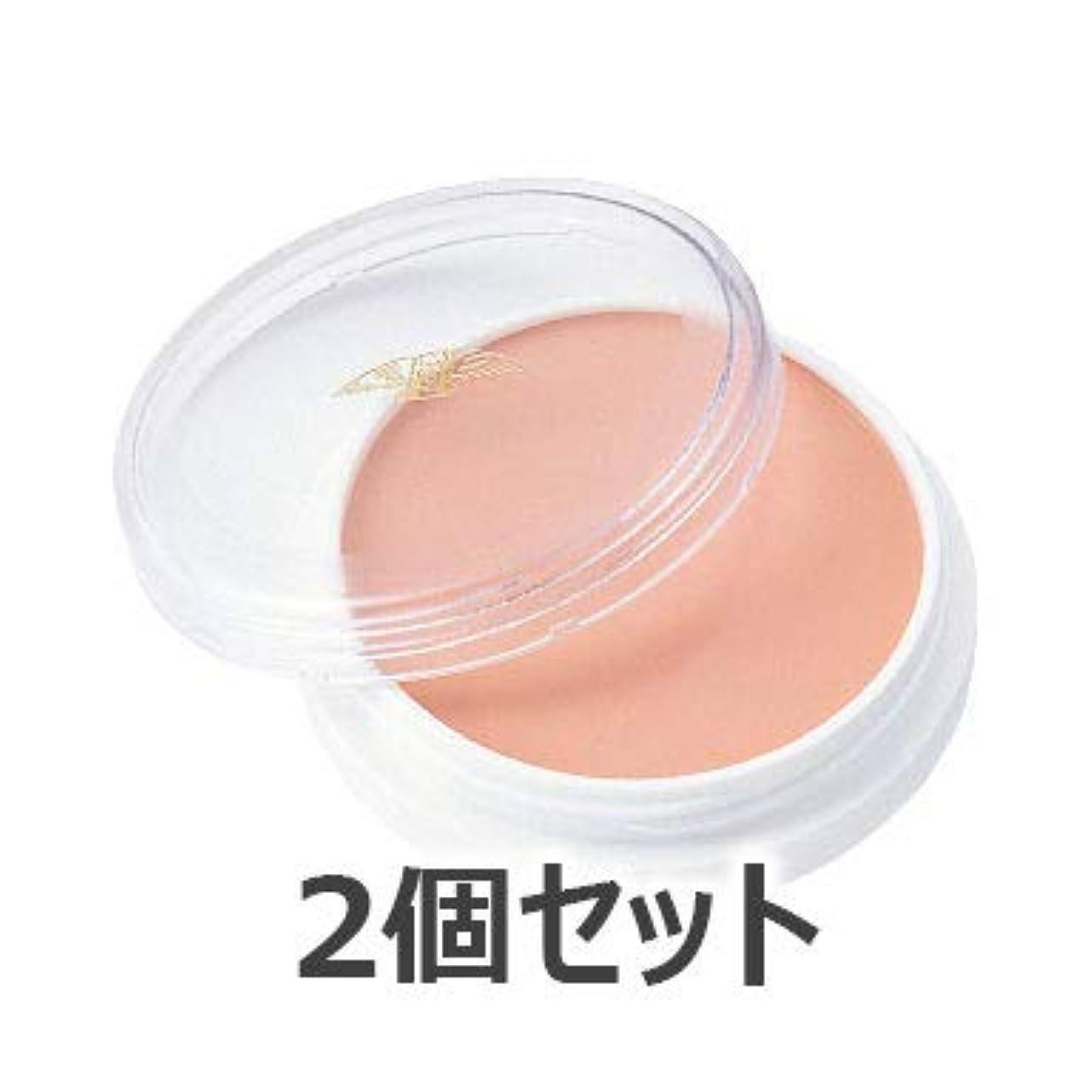 アルネ肥料コンパニオン三善 グリースペイント 2個セット (31P)