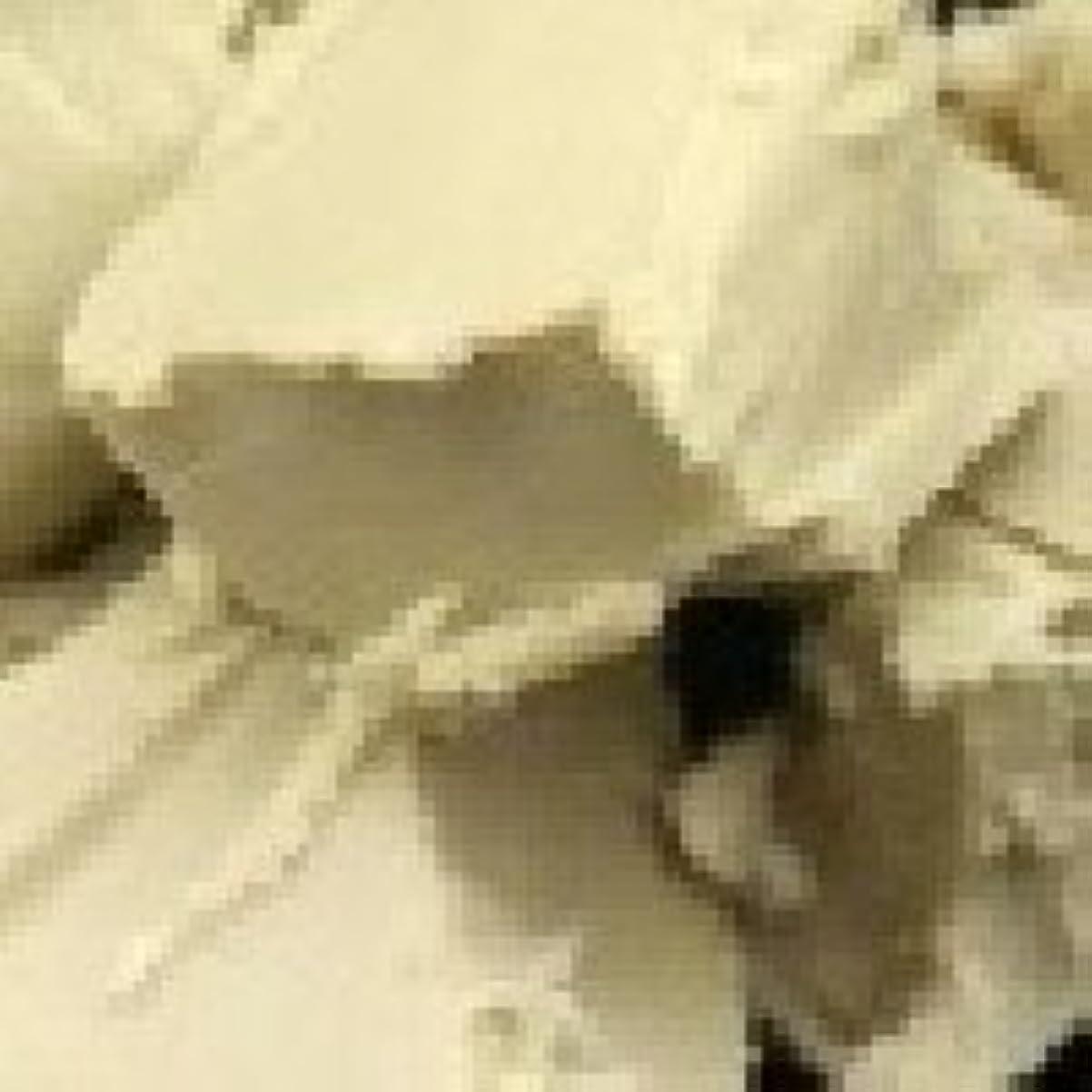 歴史的アルファベット潜在的な天然 シア バター?オーガニック 【未精製】 100g