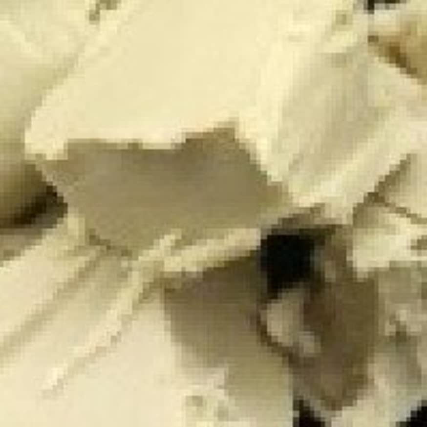 食品対簡単に天然 シア バター?オーガニック 【未精製】 100g