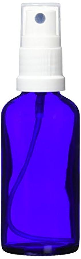専門化する北米不平を言うease 保存容器 スプレータイプ ガラス 青色 50ml