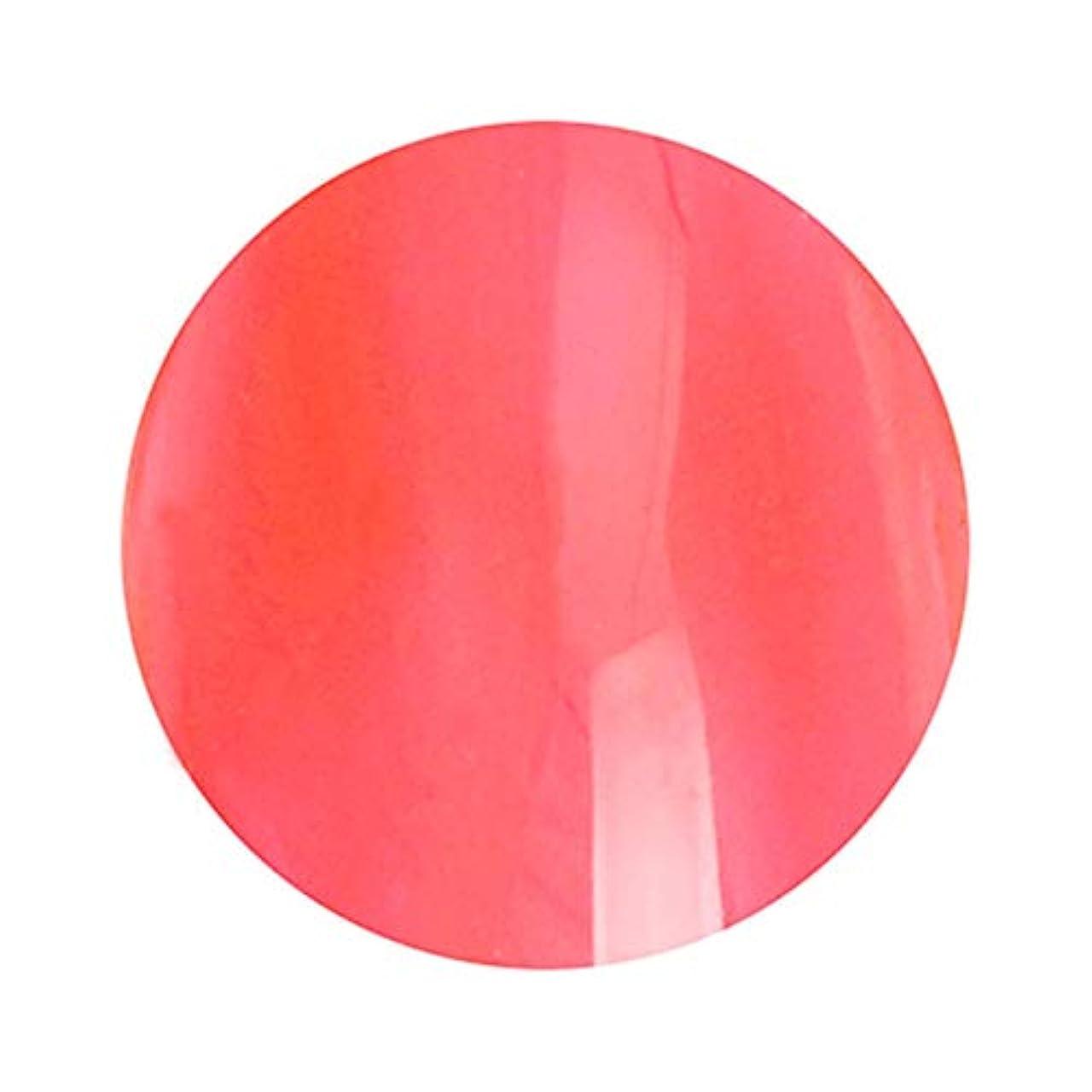 対応調停者モードT-GEL COLLECTION ティージェルコレクション カラージェル D237 クリアレッド 4ml
