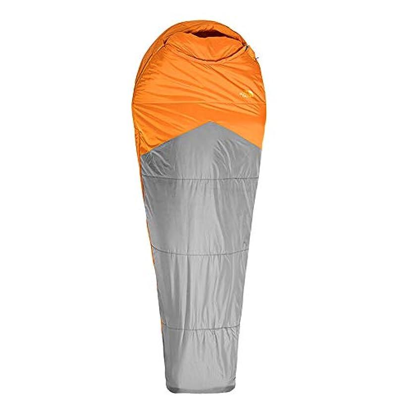ラオス人理解する心配するYONGMEI 寝袋 - 秋と冬の新しい快適な暖かい屋外キャンプユニバーサル寝袋 (色 : Gray)