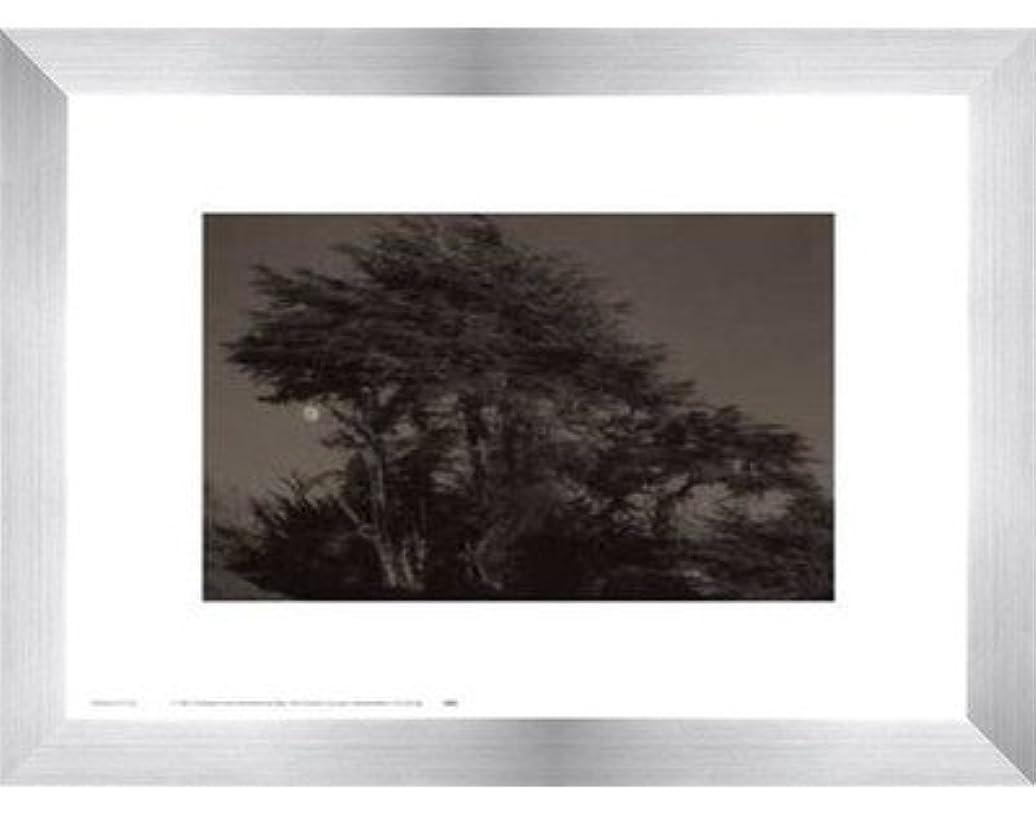 団結する間隔修道院Harvest Moon by Paul Kozal – 14 x 11インチ – アートプリントポスター LE_61797-F9935-14x11