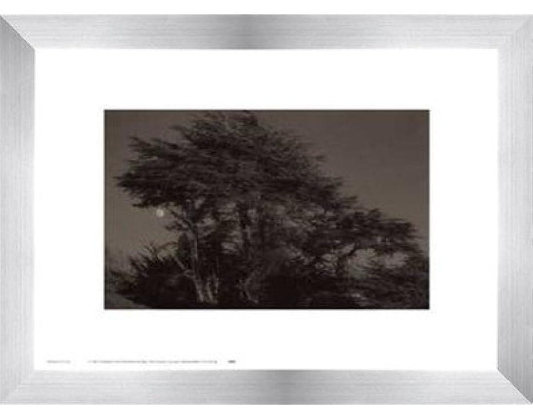 山積みの飛行場順応性のあるHarvest Moon by Paul Kozal – 14 x 11インチ – アートプリントポスター LE_61797-F9935-14x11