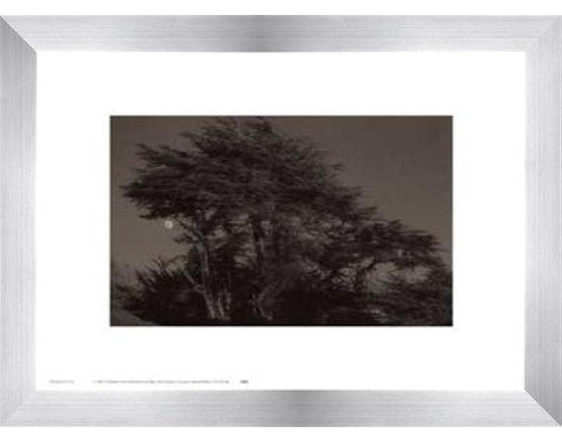 窓みぞれ履歴書Harvest Moon by Paul Kozal – 14 x 11インチ – アートプリントポスター LE_61797-F9935-14x11