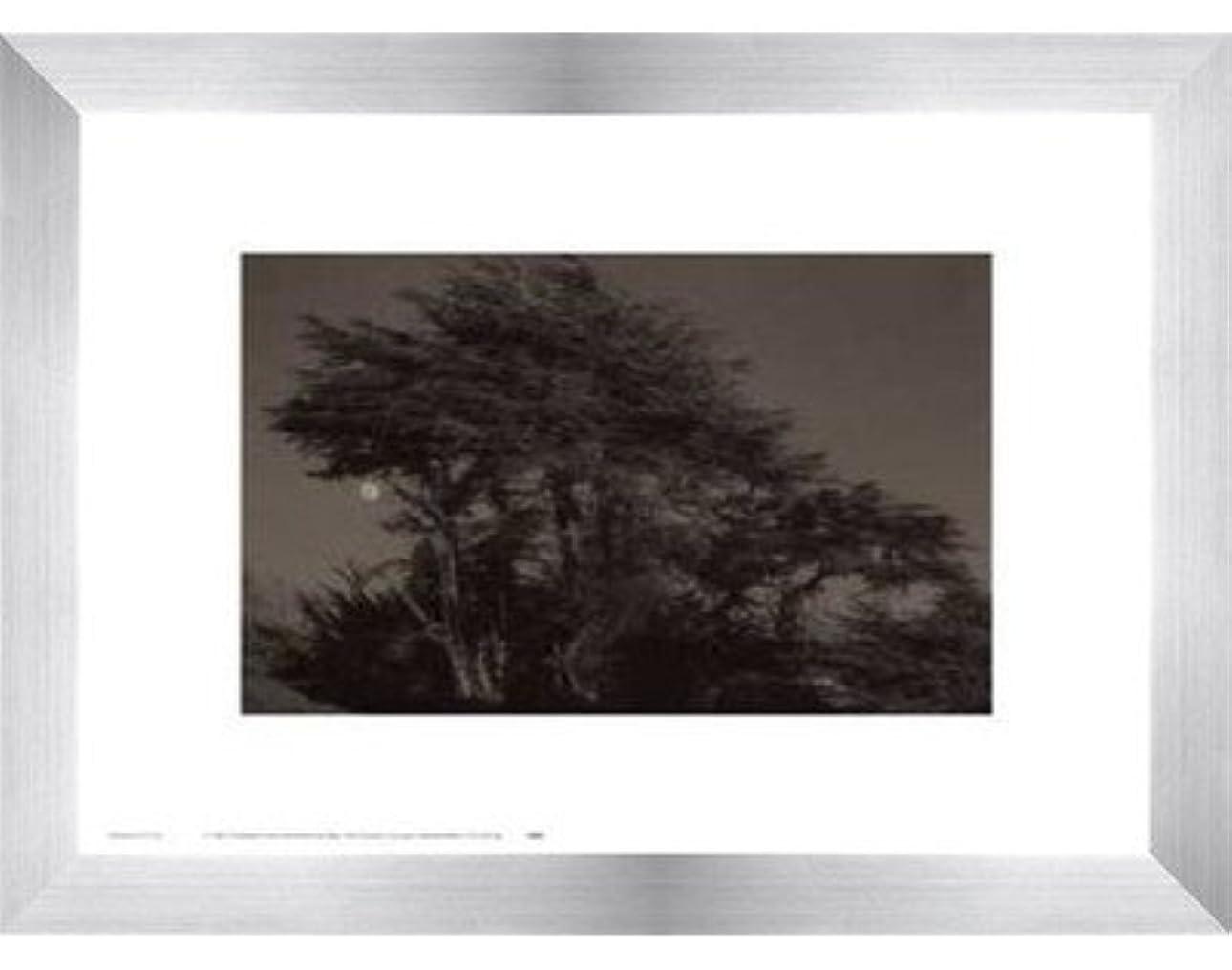 カビ殉教者航空Harvest Moon by Paul Kozal – 14 x 11インチ – アートプリントポスター LE_61797-F9935-14x11