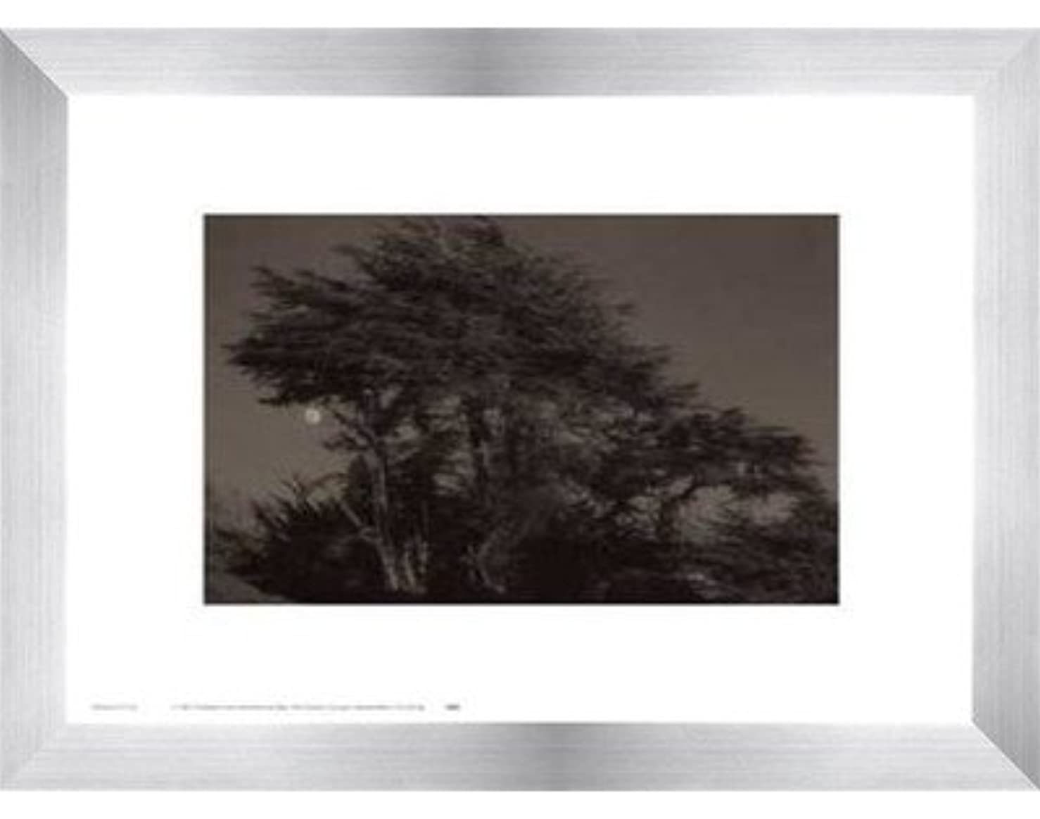 取るに足らない手を差し伸べるサイクルHarvest Moon by Paul Kozal – 14 x 11インチ – アートプリントポスター LE_61797-F9935-14x11
