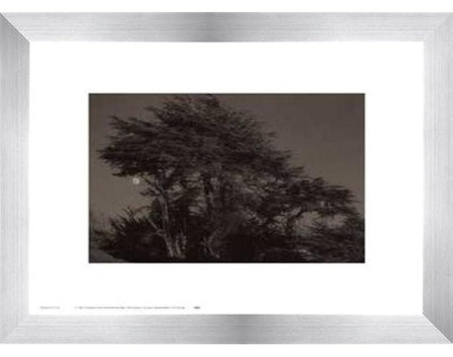 読みやすい並外れたところでHarvest Moon by Paul Kozal – 14 x 11インチ – アートプリントポスター LE_61797-F9935-14x11