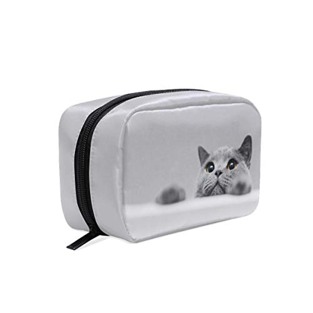 受賞パスライド(VAWA) メイクポーチ 大容量 可愛い 猫 グレー 動物 化粧ポーチ コンパクト 機能 おしゃれ 携帯用 コスメ収納 仕切り ミニポーチ バニティーケース 洗面道具