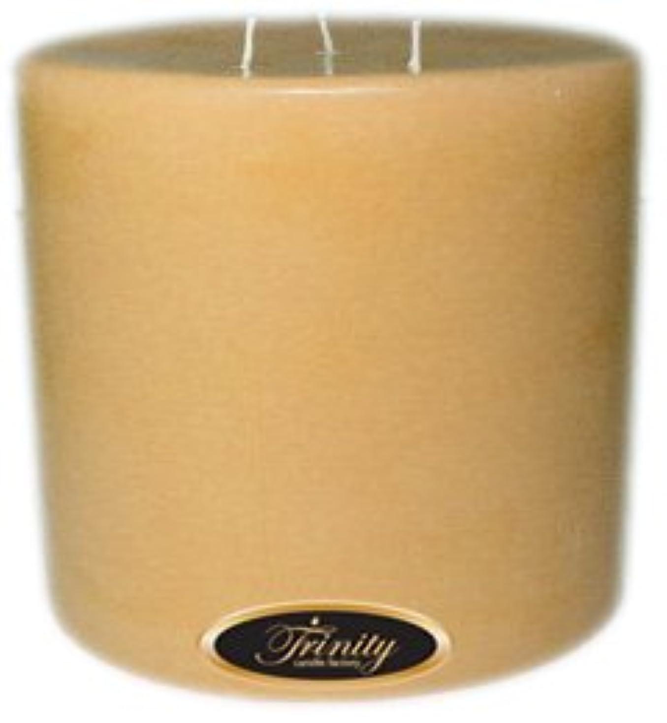 少数感嘆符メーカーTrinity Candle工場 – Cookieベイク – Pillar Candle – 6 x 6
