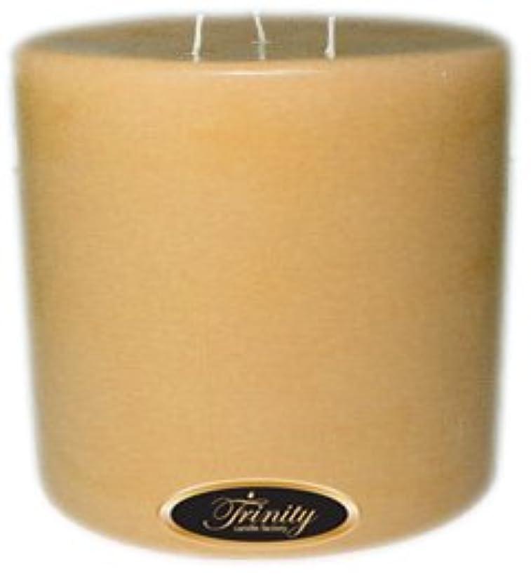 タブレット風訪問Trinity Candle工場 – Cookieベイク – Pillar Candle – 6 x 6