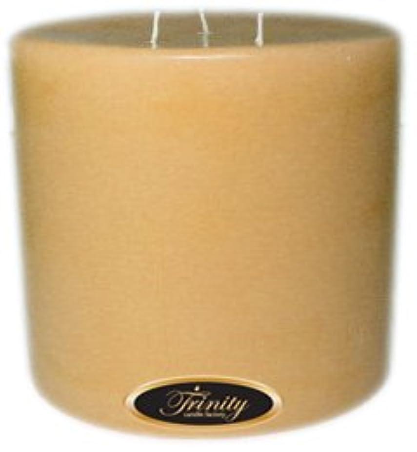 囲まれたブランク擁するTrinity Candle工場 – Cookieベイク – Pillar Candle – 6 x 6