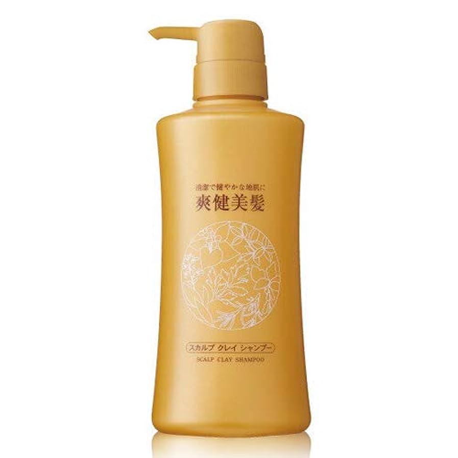 再発する性別収穫エビス化粧品(EBiS) 爽健美髪スカルプクレイシャンプーN